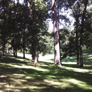 Centerville Park